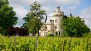 On adore : Bordeaux évidemment ! Cette ville magnifique est sans aucun doute le cœur de cette belle région viticole. On vous conseille : Faire un tour à la Cité du vin ! Ce haut lieu de la culture qui captive par son architecture moderne, retrace l'histoire de la vigne et du vin de la région.