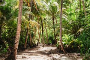 Une parenthèse loin du monde | Panama